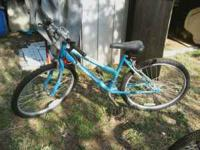 its a 20 in. girls bike called a fury blue in color can