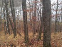 Fall Special!!! 2 Lake Lots on the North End of Elm