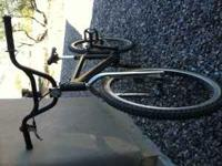 "Schwinn Brian Foster Super Stock 24"" Cruiser Please"