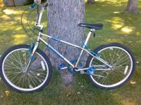 I have a 24 inch BMX trantula bike it is not a Walmart