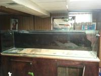 I have a 240 gallon glass aquarium that had the front