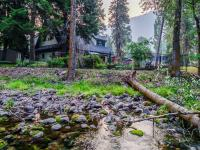 Absolutely one of a kind home with Rattlesnake Creek