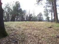 25 acres of privacy and views. Nice homesite with views