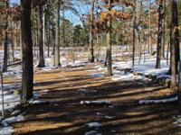 25 BEAUTIFULLY WOODED ACRES, ELEC, POND, ADJOINS MDC,
