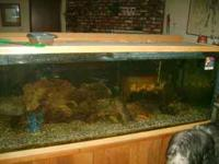 i have this fish tank that i need to sell..i just dont