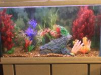 I have a 58 Gallon Fish Tank For sale. $250neg. I
