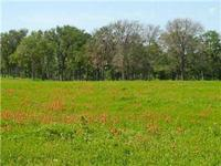 Nice house and 37.63 acre tract found in Western