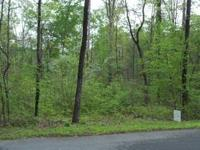 .27 ACRES ON WOODED HOUSE LOT ON PAVED ROAD. 2 BLOCKS