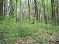 PRIVATE WOODED LAND near DANBY STATE FOREST -----