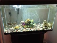 28 Gallon fish tank for sale. - Includes the black