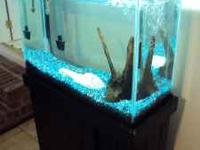 I have two aquariums for sale. The black aquarium is a