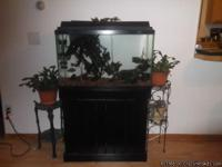 I am selling our 29 gallon aquarium with stand. We