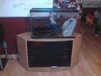 HAVE A 29 GALLON TANK & STAND TANK HOLDS WATER JUST