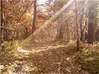 EXCELLENT WOODED 7 ACRE LOT WITH ROAD FRONTAGE ON