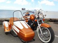 awesome, 1-of-a-kind custom Motorcycle with Sidecar