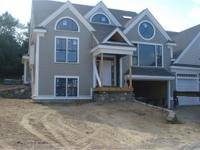 Stunning New Construction with thoughtfully designed