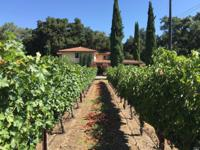 Your opportunity to own a piece of Napa Valley Wine