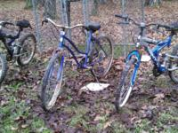3 bikes. The okd school ne has in the last year had a