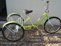 A completely redone 3 wheel single speed coaster brake