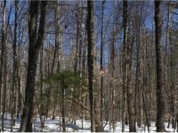 Wooded 9.9 acres located in the beautiful Granite