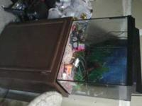 FOR SALE A FISH TANK WITH STAND,FILTER,LIGHT AND MORE