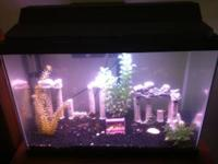I AM SELLING MY 30 GALLON FISH TANK/WITH THE STAND.