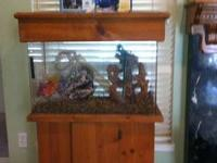 Hello all, I have a thirty gallon tank for sale. This