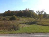 2.02 Acres for sale on Maple Rapids Road, St. Johns