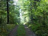 Private and Secluded 160 acres($76,000 a 40 acre) with