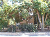 Horse property. Almost an acre, Nice older home at the