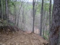 134 surveyed mountain acres with creek, springs, pond,