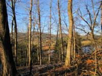 8.34 Acre surveyed tract offers a beautiful home site