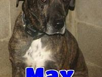 #331 Max's story 'Hello. My name is Max and I'm about