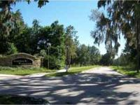 0 Heritage Pass Circle, Mount Dora, FL 32757 Early
