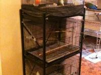 ***Awesome Cage for Medium Parrots & Breeder Pairs***