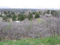 Majestic View Lots in Cottonwood Heights. Three