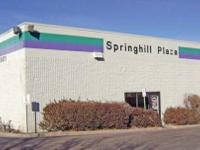 Springhill Plaza. Structure SF:63,667. Available