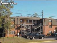 Summer sublease at Roanoke Apartments, walking distance