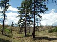 Colorado Mountain Property For Sale. We are selling a