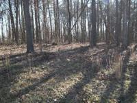 Very Nice 9+ acre lot in beautiful Gardner Place
