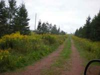 Price reduced $10k 10 acres of land for sale. 2 acres