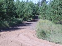 """5.25 heavily wooded acres in """"The Pines on the"""