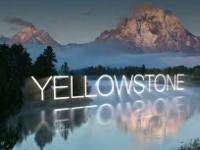 Outstanding vacation rentals by owner in Jackson Hole,