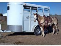 2010 Calico two Horse Slant for sale2010 Calico two