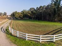 Wonderful, serene, updated country home! 4.98 ac 20