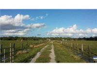 Working cattle Farm! 20 Acre Ranch, only 12 miles west
