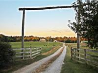 AVAILABLE: A beautiful 142 acre horse/cattle farm,