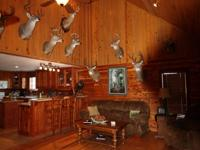 Beautiful cabin situated on 355 Acres on Top of Spruce