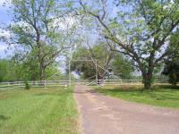 87 ACRE WORKING CATTLE RANCH! ENJOY 1/2 MILE DRIVE FROM