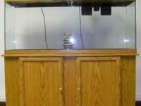 40 gallon fish tank with a two door cabinet stand and a